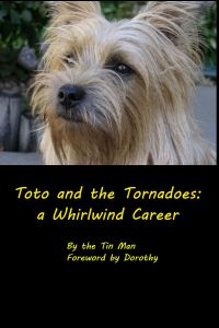 Toto's Biography: The Front Cover