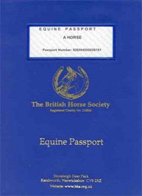 A horse passport, for your interest. (photo: horsetalk)